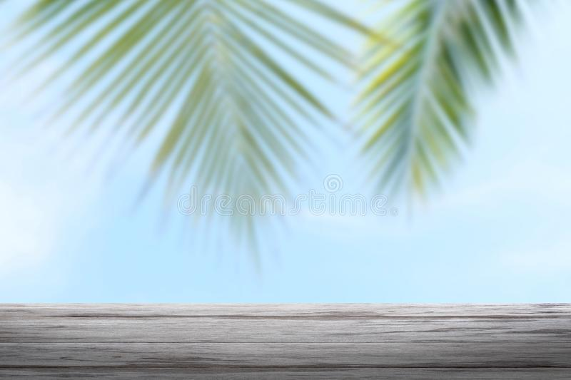 Background coconut and wood plank, coconut palm tree background blurred and slats wooden texture floor plank table empty royalty free stock photos
