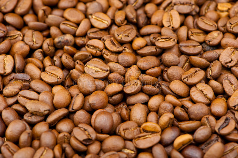 Background from coffee grains stock photography