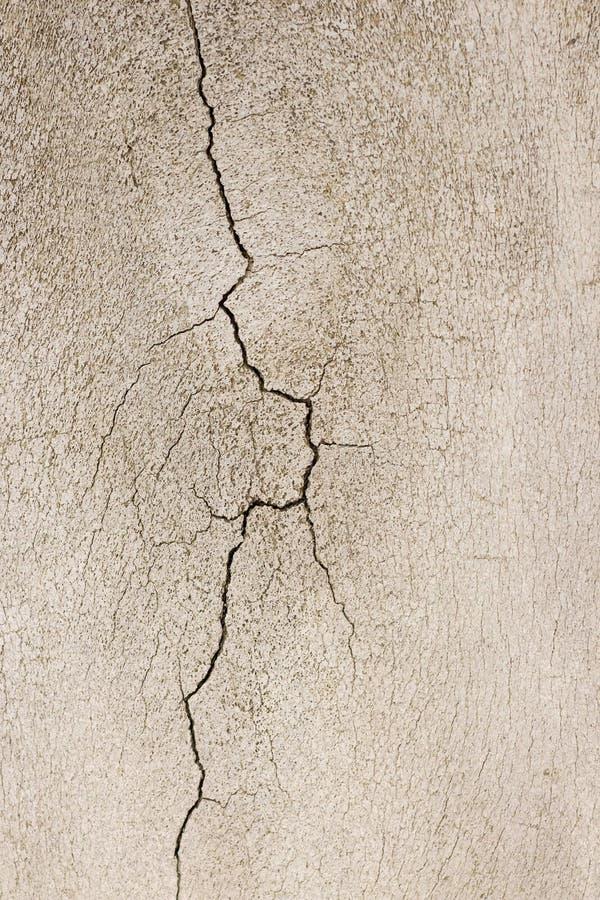 Close-up photography of crack on the bone stock image