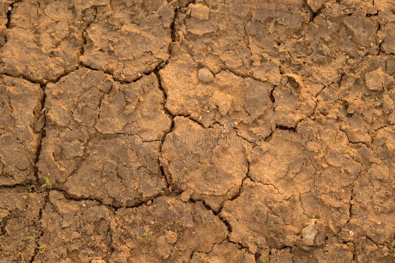Background of cracked dry soil. Abstract background of dry ground surface in cracks and flakes royalty free stock photo