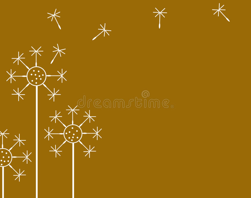 Background From Dandelion Stock Photography