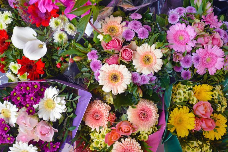 Background with different beautiful flower bouquets royalty free stock photo