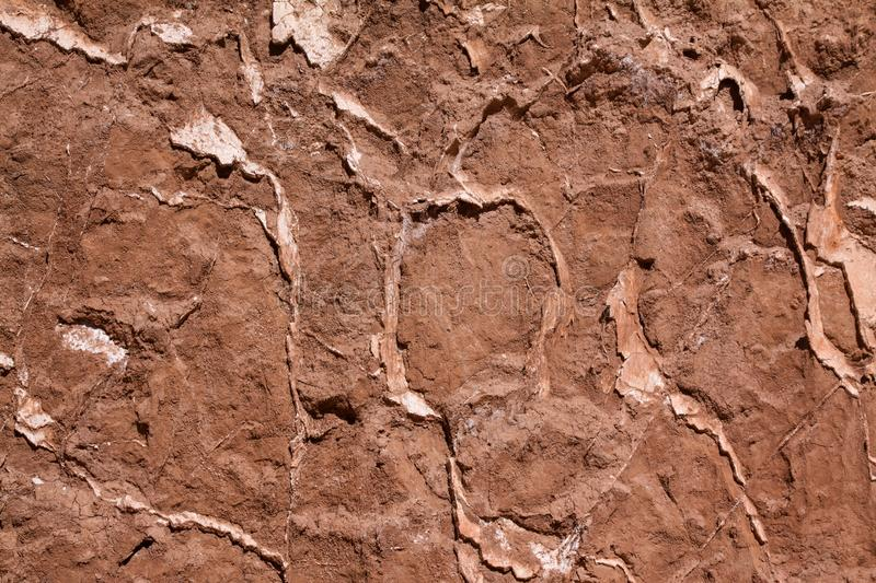Texture dry soil royalty free stock image