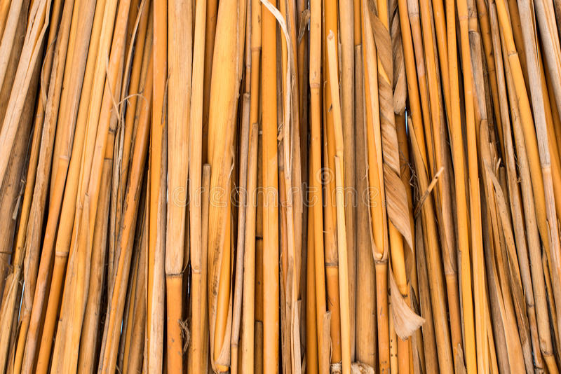 Background ecological materials of dried reeds. Background of dried reeds ecological materials stock photography