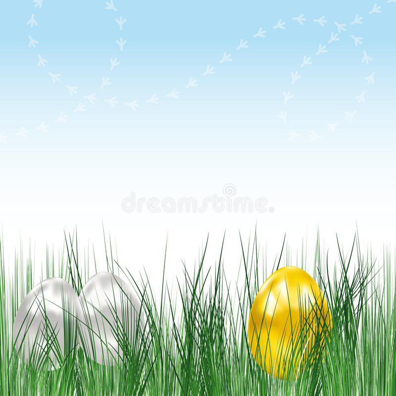 Background with eggs. stock image