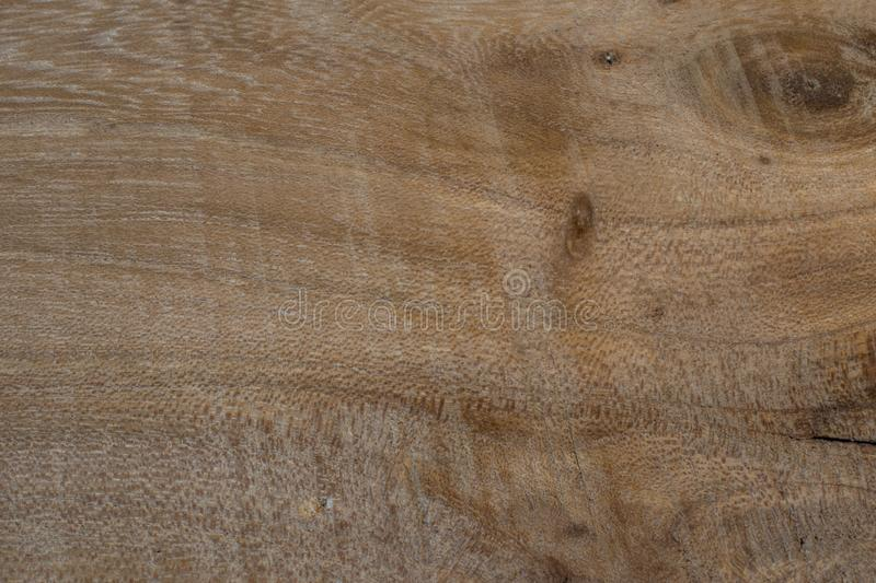 Background of exotic wood grain stock image