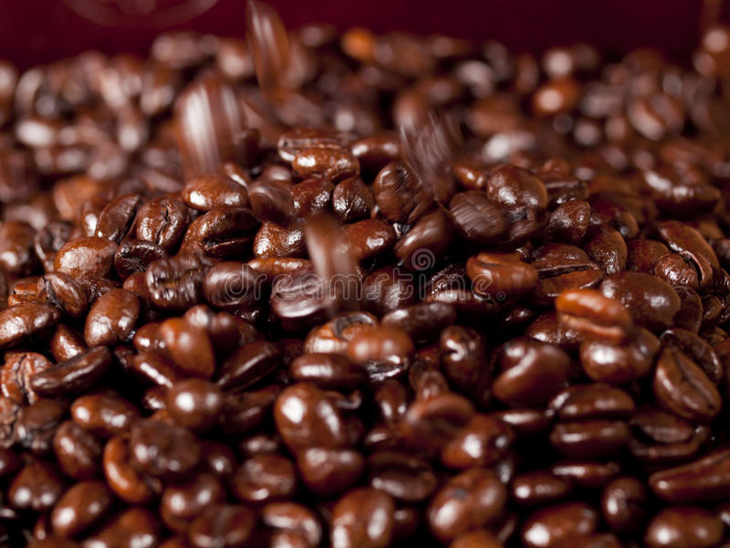 Background of falling coffee beans royalty free stock photo