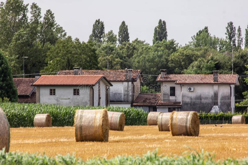 Background. farm with cultivated land and hay harvest in golden bales. stock photo
