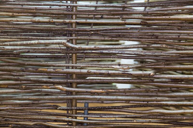 Background fence of vines woven from the branches of the vine trees. Backgrounds, structures. Design stock image