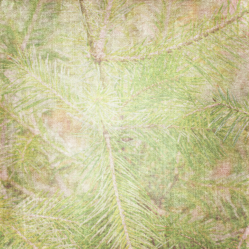 Download Background with fir stock illustration. Image of canvas - 7321479