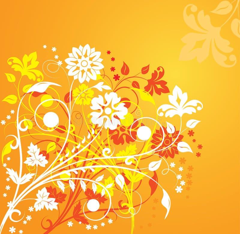 Background flower, elements for design, vector vector illustration