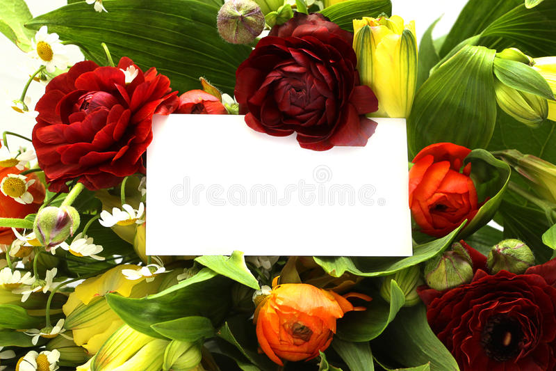 Background Of The Flowers Royalty Free Stock Photos