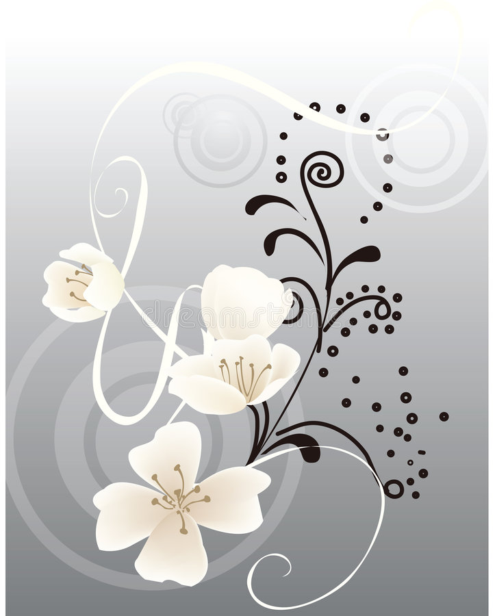 Background flowers. Decorative background vector flowers , vector illustration