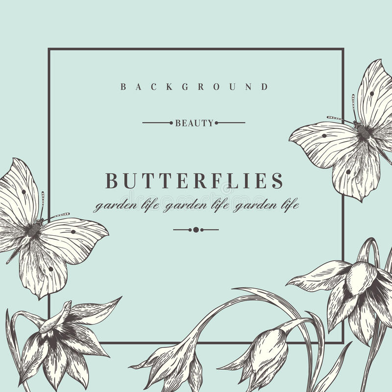 Background with flowers and butterflies. vector illustration