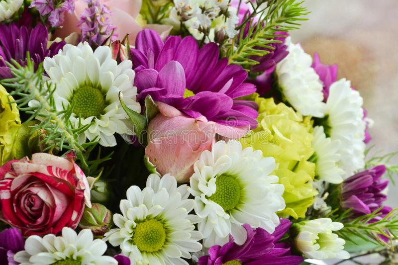 Background of flowers. Different flowers in a bouquet close-up royalty free stock images