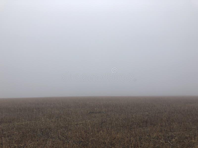 Background of foggy field. horizon. gloomy weather.  royalty free stock image