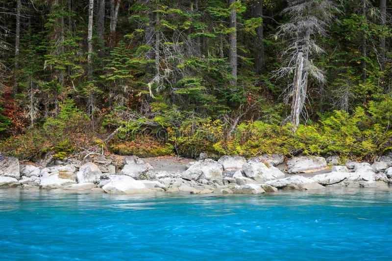 A background of a forest and a glacial fed blue river stock images