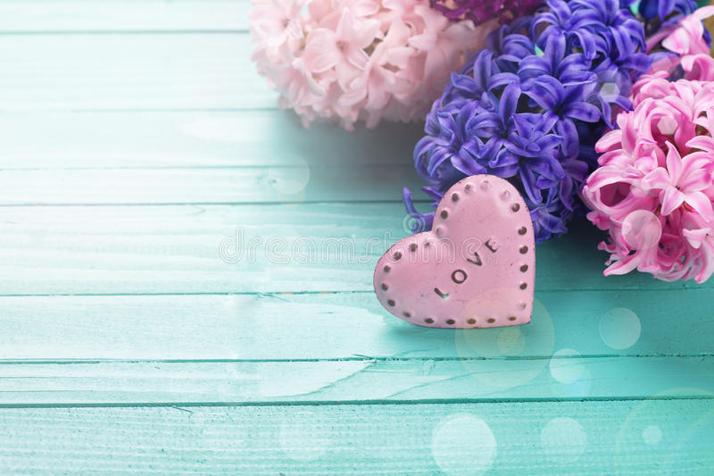 Background with fresh flowers hyacynths and heart. Postcard with fresh hyacinths and little pink heart on turquiose background. Selective focus. Place for text royalty free stock photo