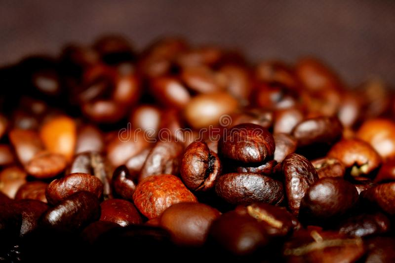 Background with fried coffee beans stock image