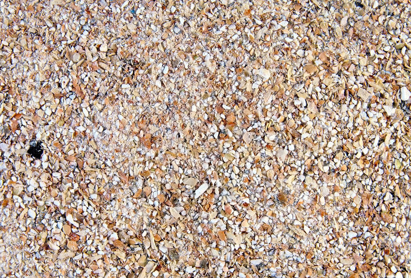 Background from the germinated and ground buckwheat, wheat and rye bran stock image