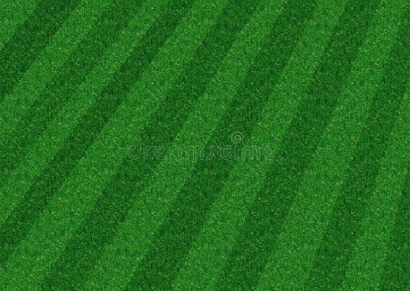 Background Grass stock photo