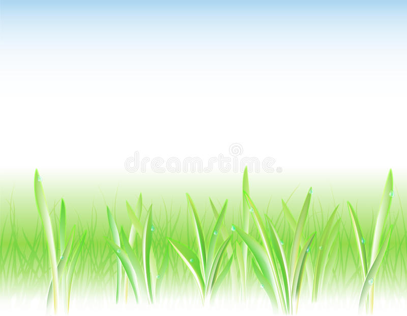 Background with the grass and drops. Natural background with the fresh leaves and droplets vector illustration