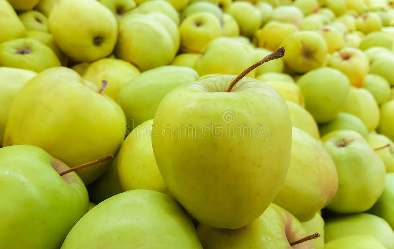 Background of green apples. Fruit royalty free stock images
