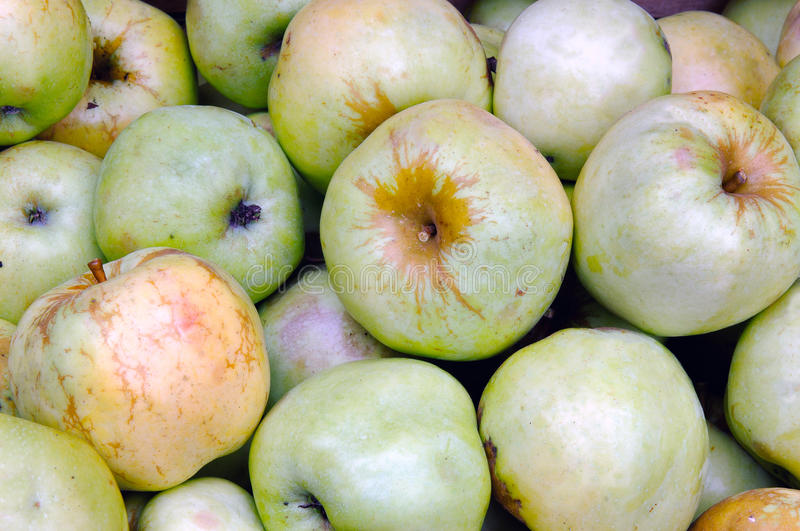 Background of green apples. stock images