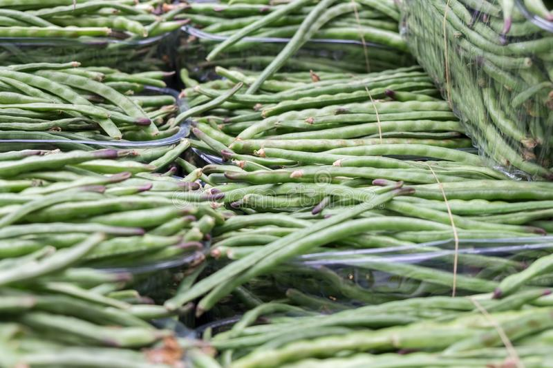 Background of Green Beans sold at city market royalty free stock photography