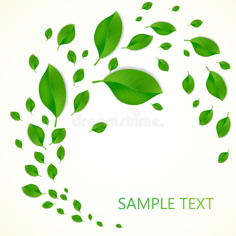 Background with green fresh leaves and place for your text. Vector illustration stock illustration