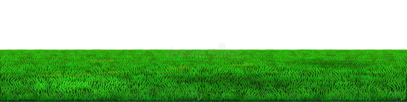 Vector green horizon background. Background green horizon vector. Realistic eco natural landscape. Lawn grass and plants royalty free illustration