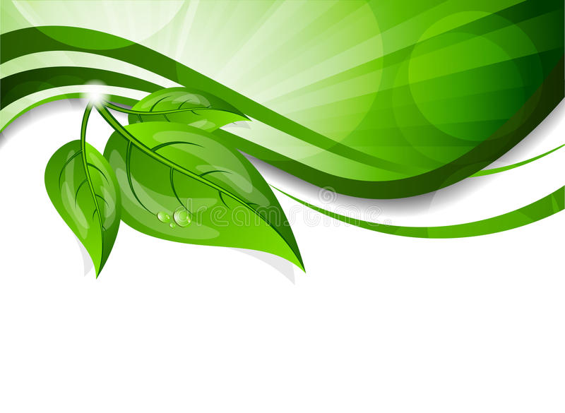Background with green leaves stock illustration