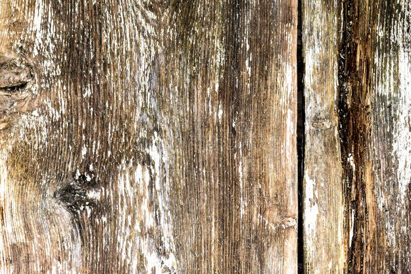 Background of grey white brown wooden boards, vintage wooden grunge planks. Old doors of wooden boards stock photo
