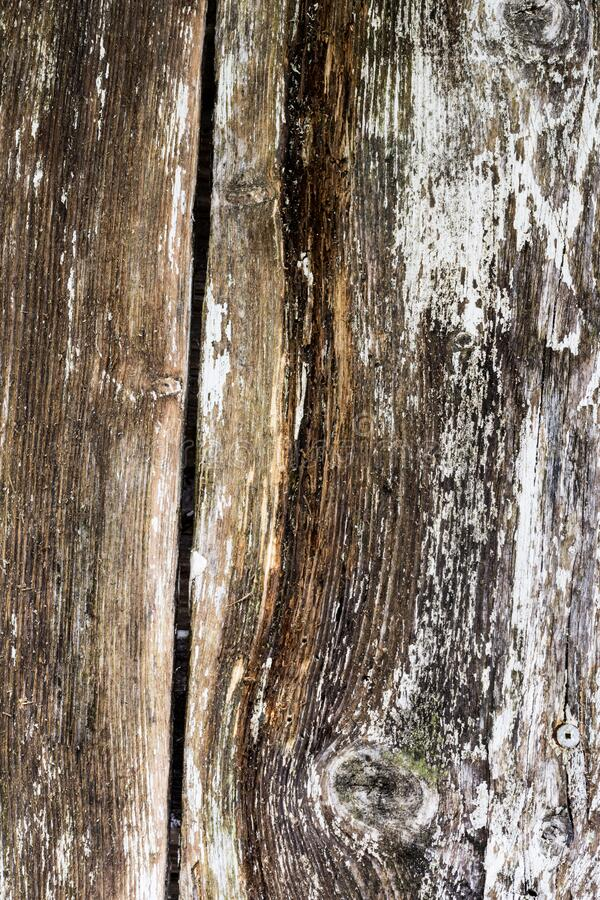Background of grey white brown wooden boards, vintage wooden grunge planks. Old doors of wooden boards stock photography