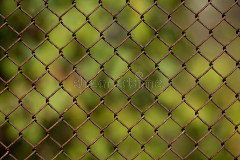 Background Grid Royalty Free Stock Image