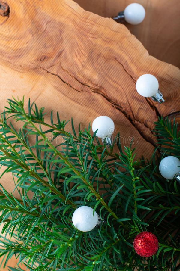 Background for Holiday New year, and Christmas by pine tree bush royalty free stock photo