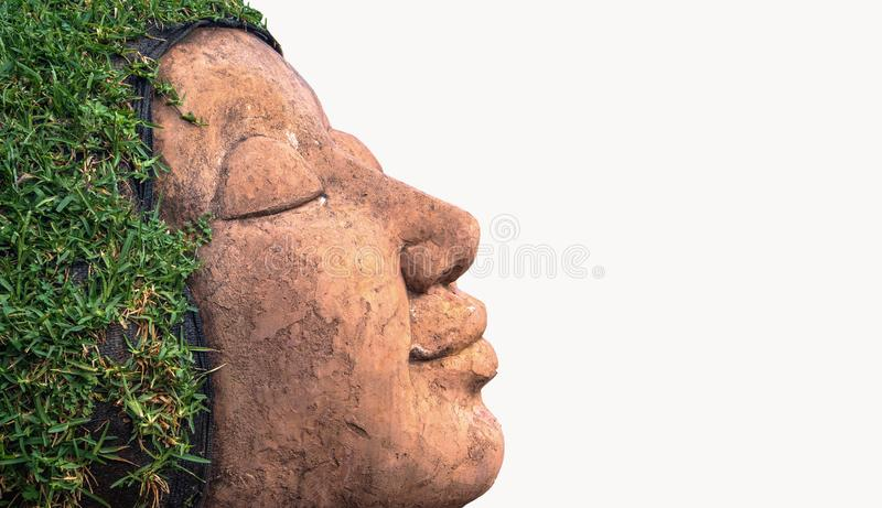 Background,Human face hair from grass.  royalty free stock photos