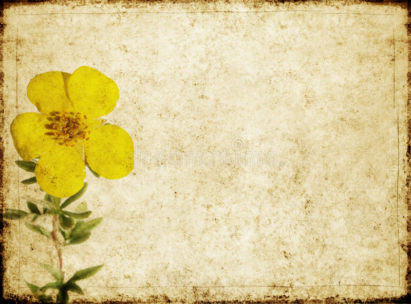 Download Background Image With Earthy Texture Stock Illustration - Image: 8810821