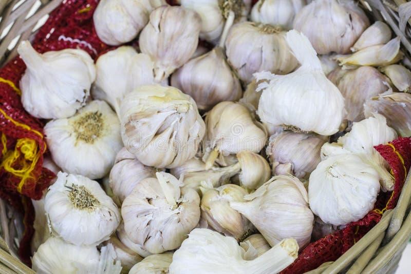 image of garlic stock photo