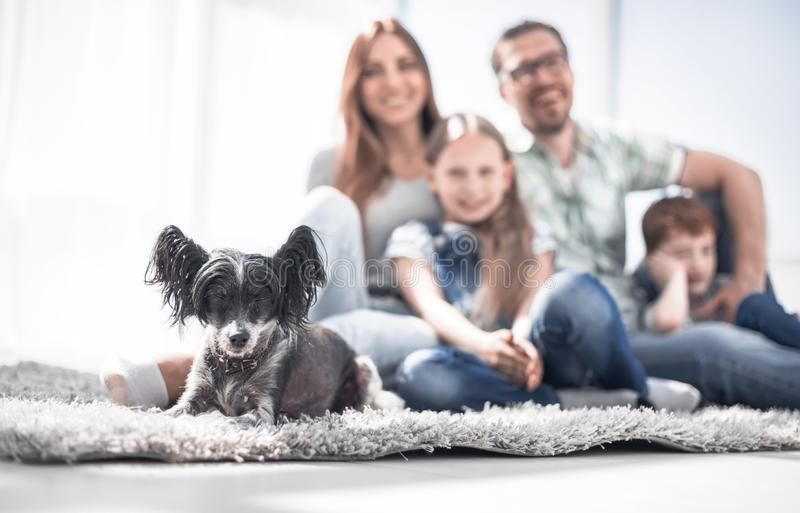 Background image of happy family with pet stock images