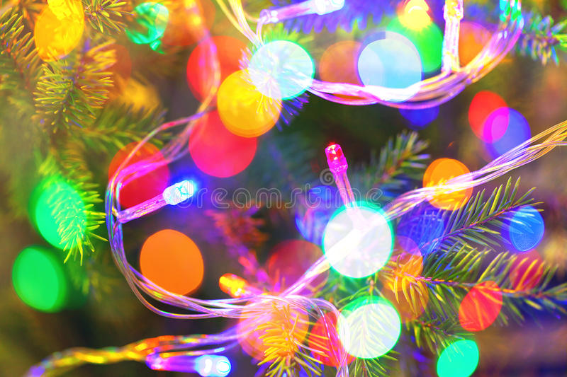 Background of inside decorated Christmas fir tree with colorful lights royalty free stock photography