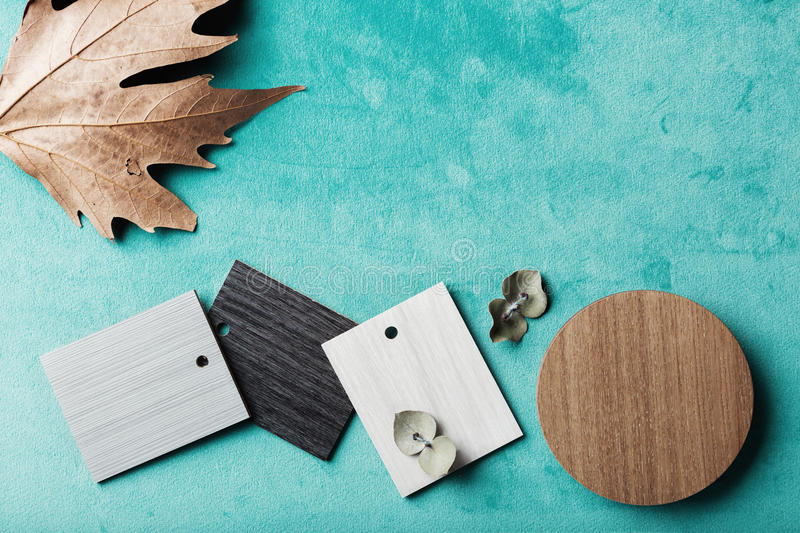 Background of interior decor swatches, with autumn and eucalyptus leaves. Background of interior decor swatches, with autumn and eucalyptus with space for text stock photos