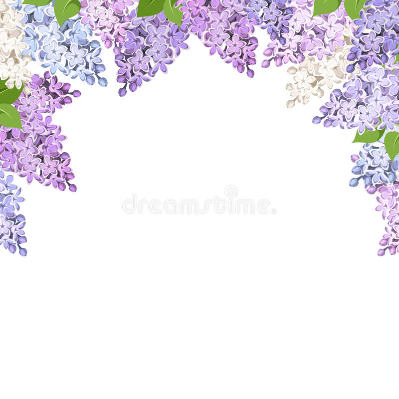 Background With Lilac Flowers. Vector Illustration. Stock