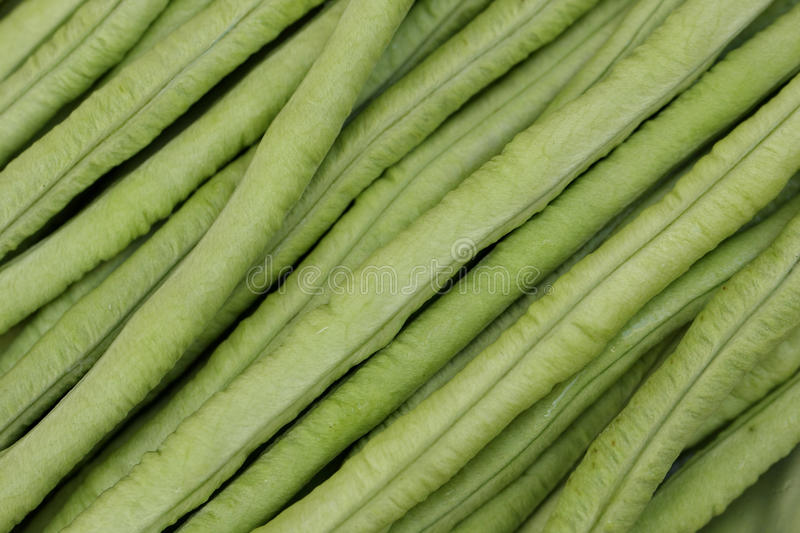 Background of long bean or cowpea royalty free stock images