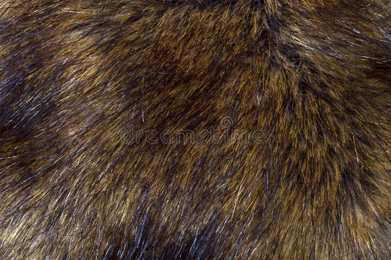 Download Background Of Lynx Fur Stock Photo - Image: 18654120