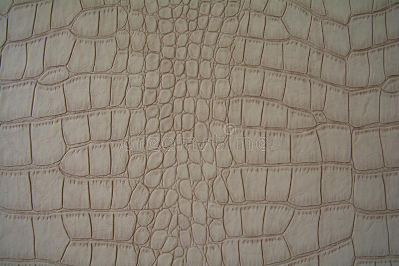 Background made of artificial beige crocodile skin royalty free stock photography