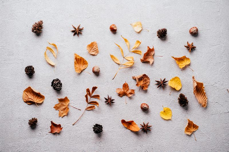 Background made of dried leaves and pine cones. Autumn vibes. Template made of dried leaves and pine cones on stone background. Seasonal background, fall concept royalty free stock photo
