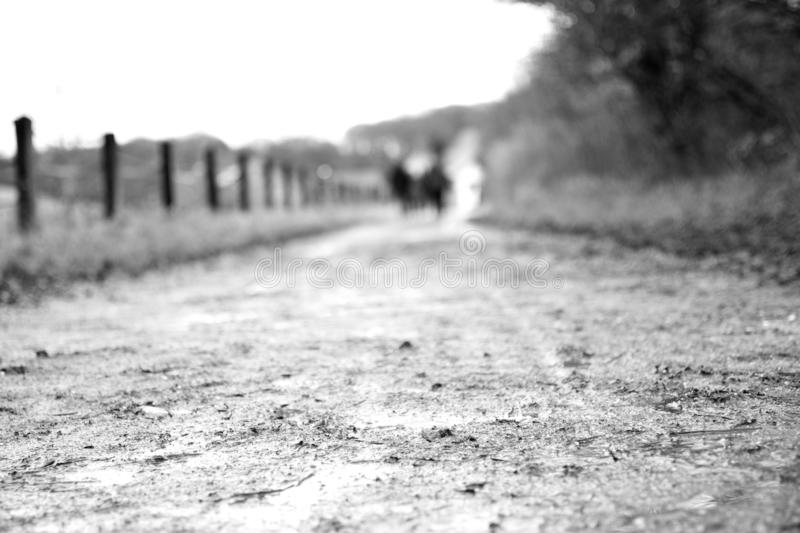 Background: Melancholy Dirt Road/Path in rainy Winter Weather with very shallow depht of field in Black and White. Background for Depression, Pain, solitude stock image