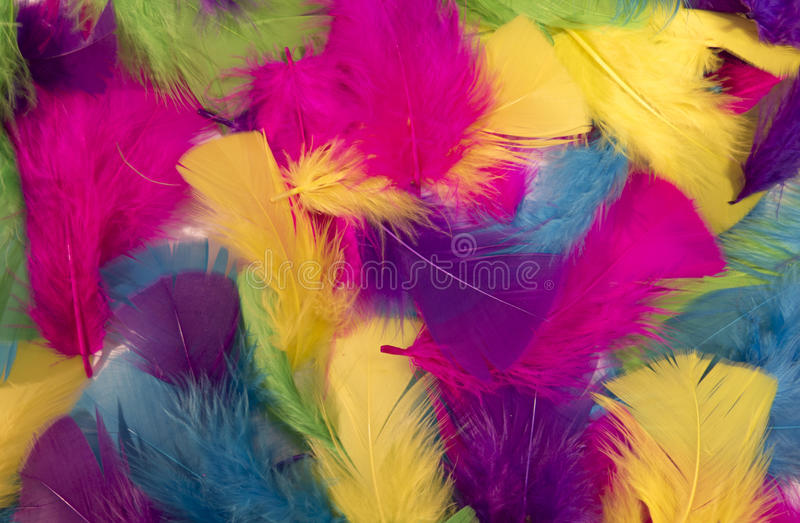 Background from multi-colored feathers. Jolly background of colored feathers stock images
