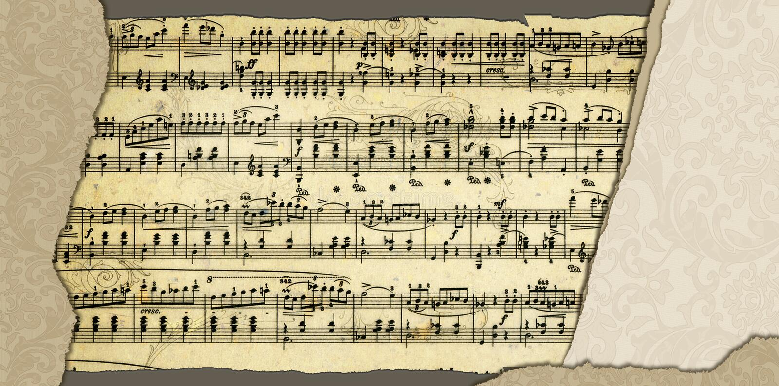 Background with music sheet page vector illustration